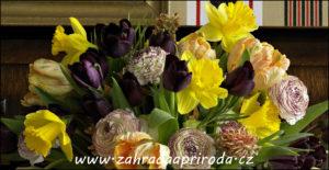 jarní kytice, foto HKK